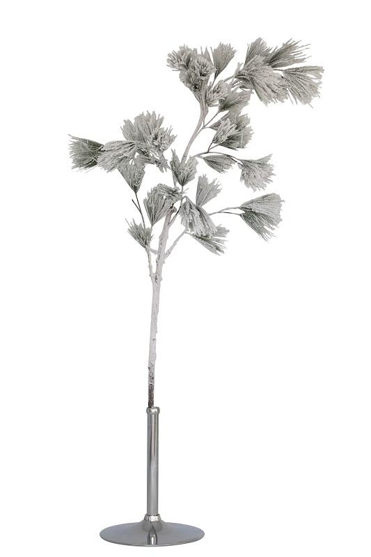 Silver Pine Branch