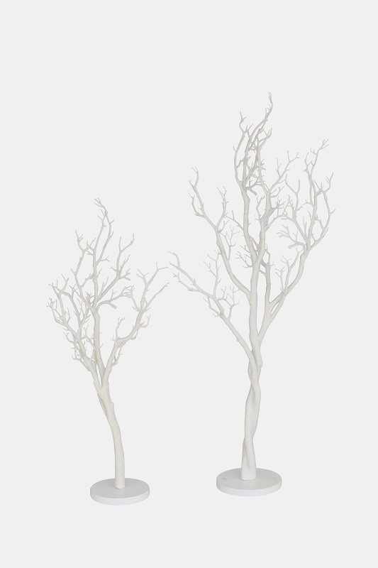 White Manzanita Tree Pair