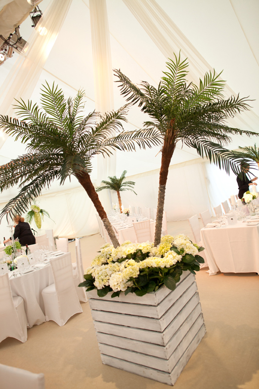Double Palm Tree Crate In Hire